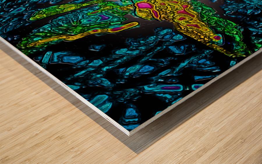 Tangled Transformation 6 Wood print