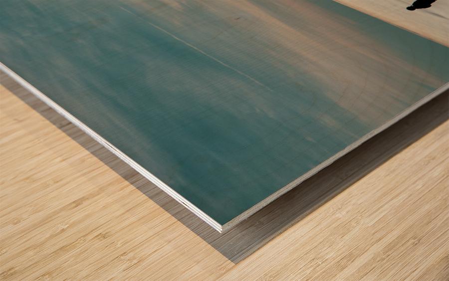 Technicolour Contemplation Wood print