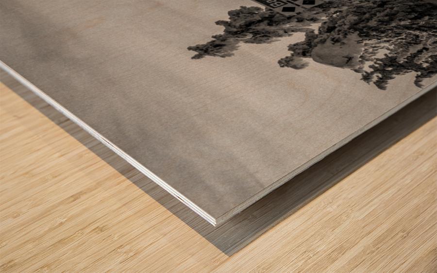 Quiet Ease Wood print