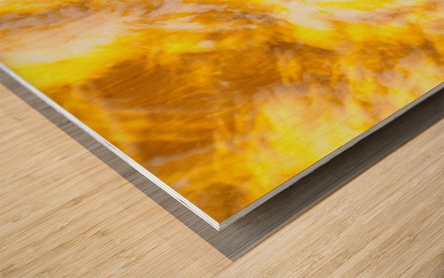 IMGP2185 Wood print