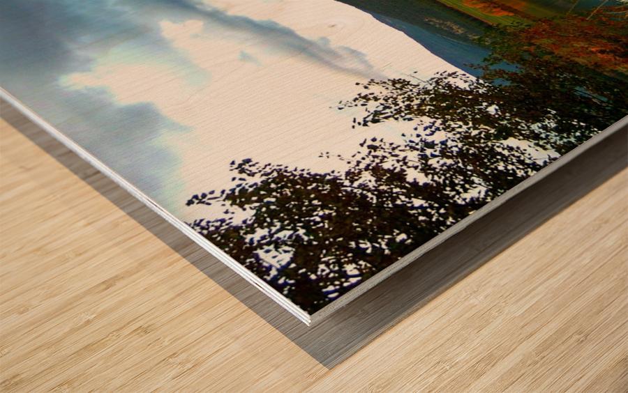 LS031 Wood print