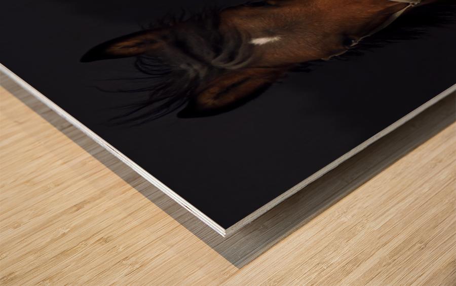 Determination Wood print