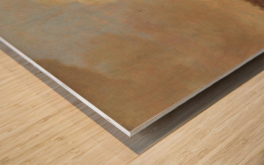 Gezicht op Rhenen Wood print