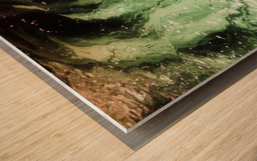 landscape_2_0451 Wood print