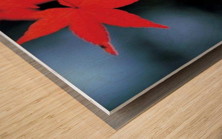 landscape_2_1134 Wood print