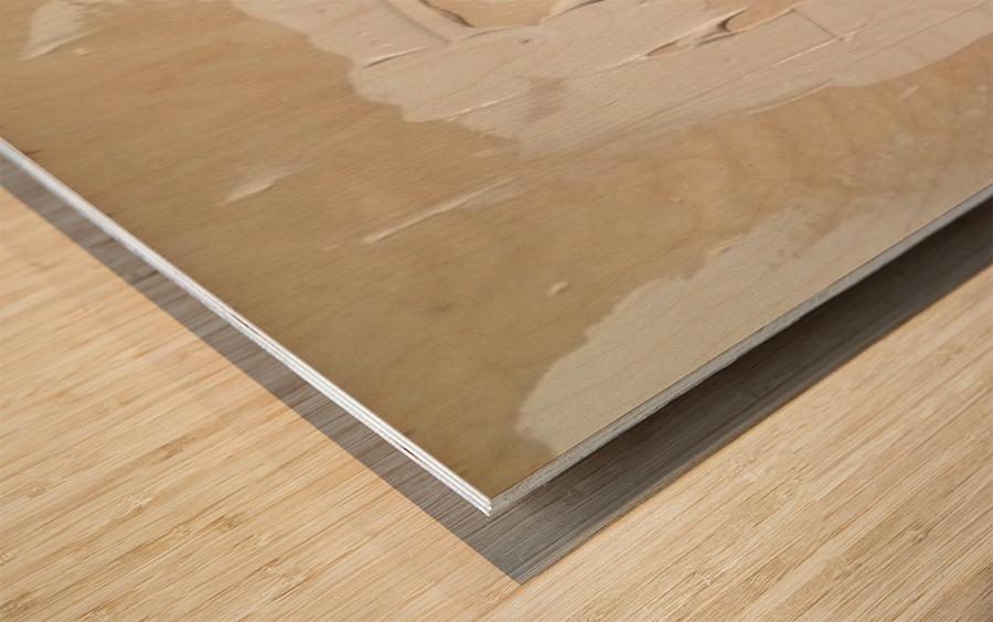 Obsession in Progress Wood print