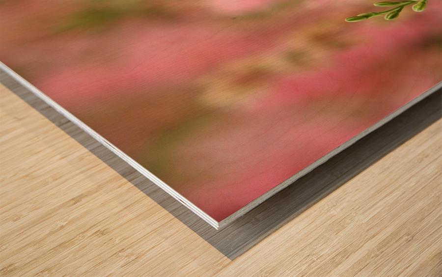 Dreamy Wood print