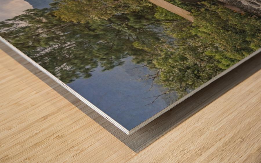 Pastaza River and Leafy Mountains Ecuador copia Wood print