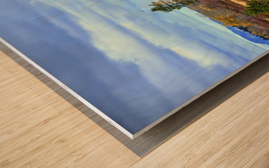 Willow Flats   Jackson Hole Wood print