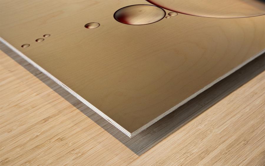 the stragglers Wood print