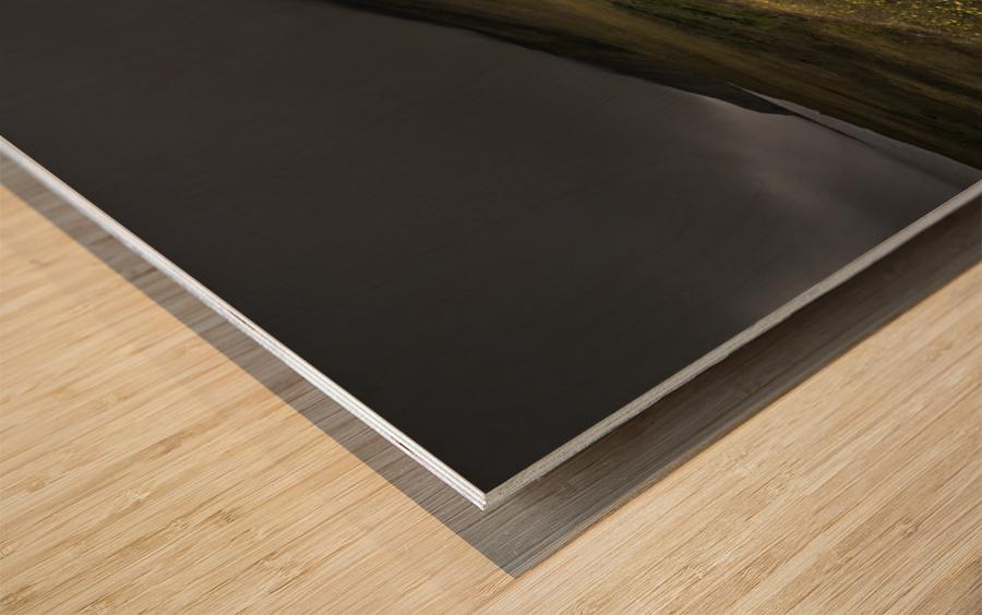 Raw Wood print
