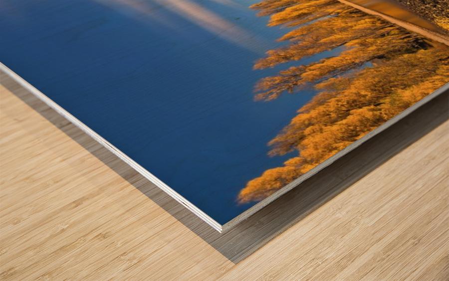 Autumn in Lake Wanaka Wood print