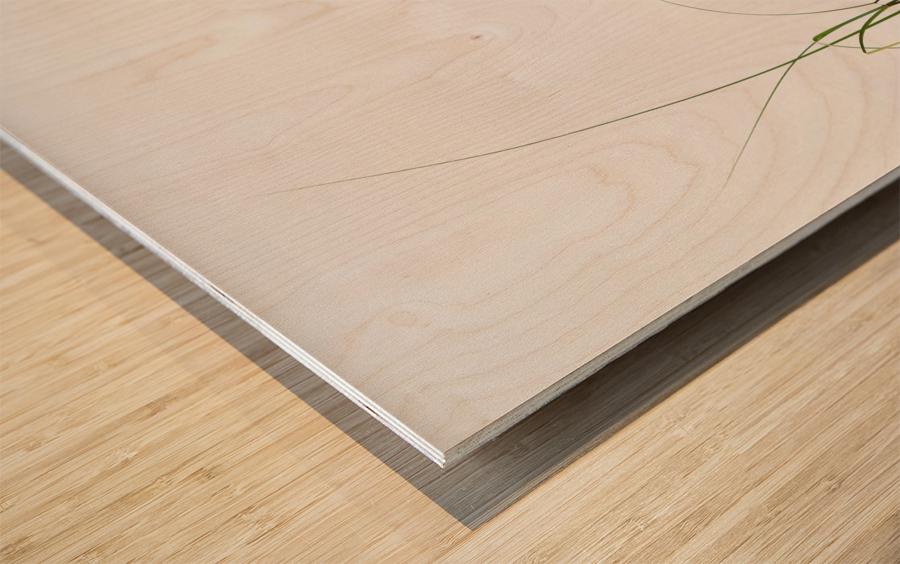 Zensation Wood print