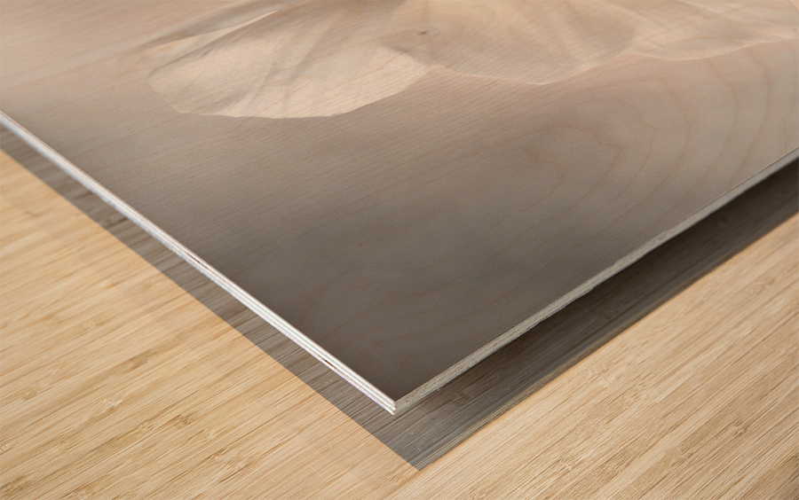 Cosmos Wood print