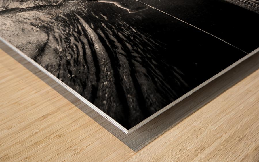 Mercan Wood print