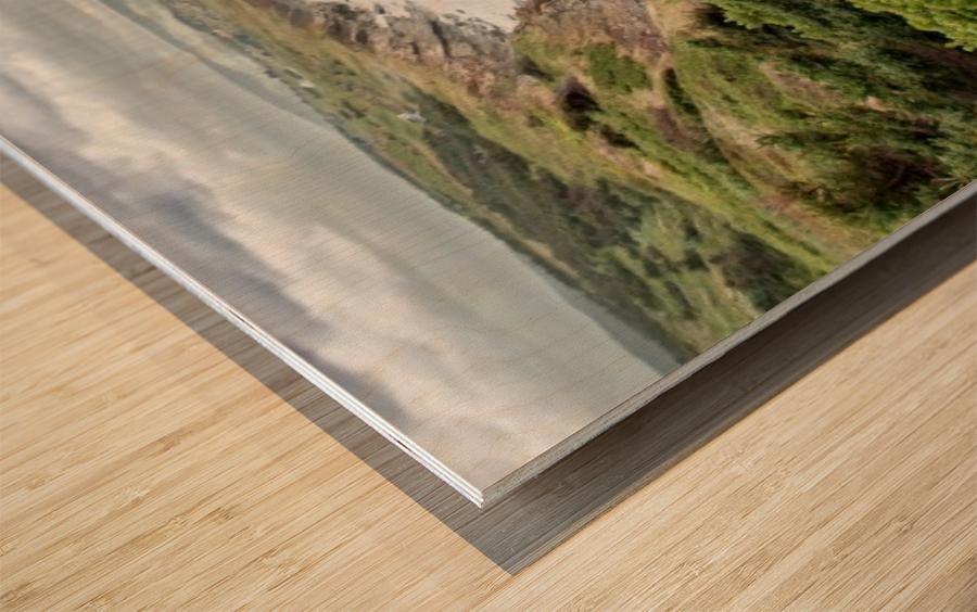 Chilling at Cap Lemoine Wood print