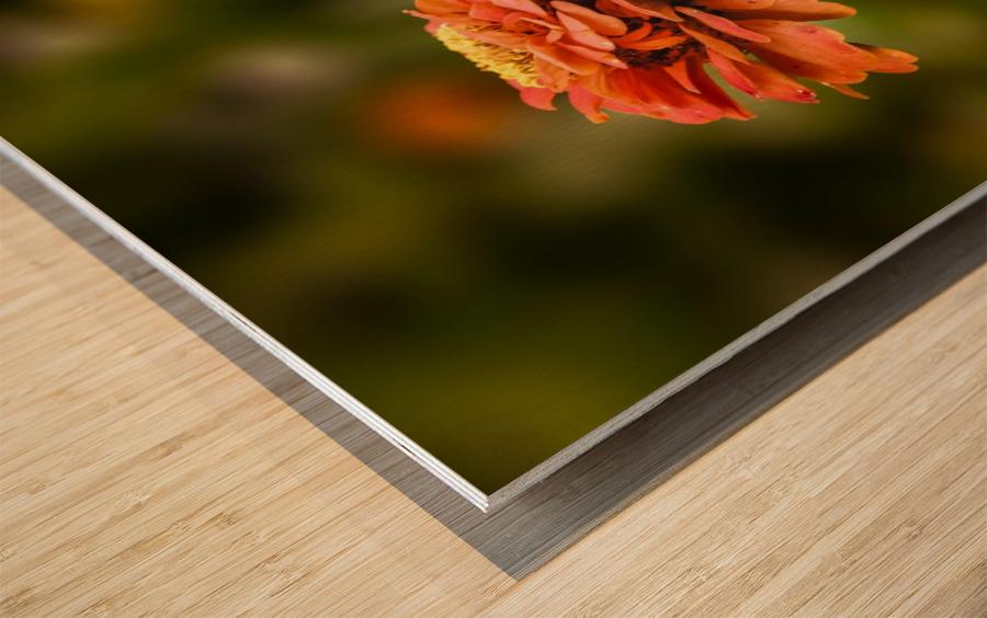 The Dreamer Wood print