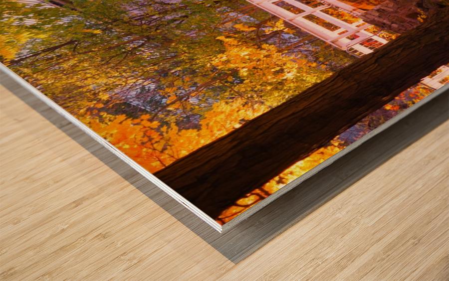 Autumn Colors II Wood print