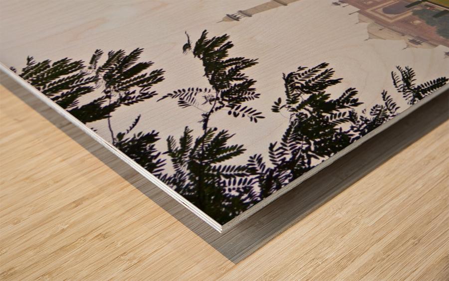 Tajmahal Wood print