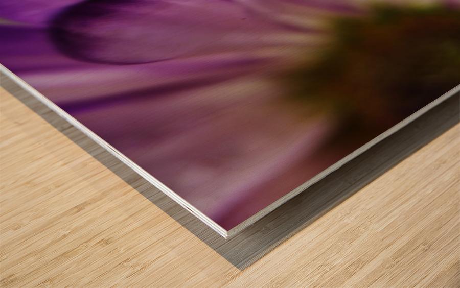 FPS-0002 Wood print