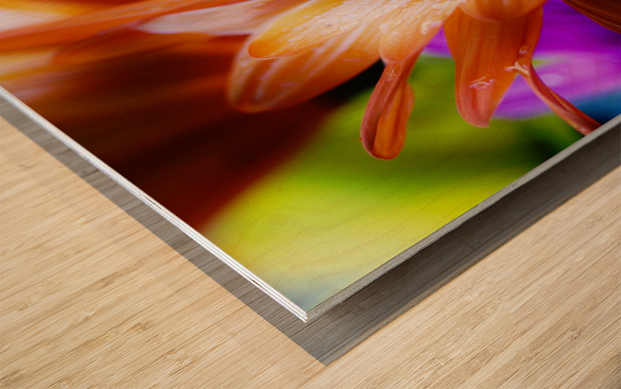 FPS-0059 Wood print
