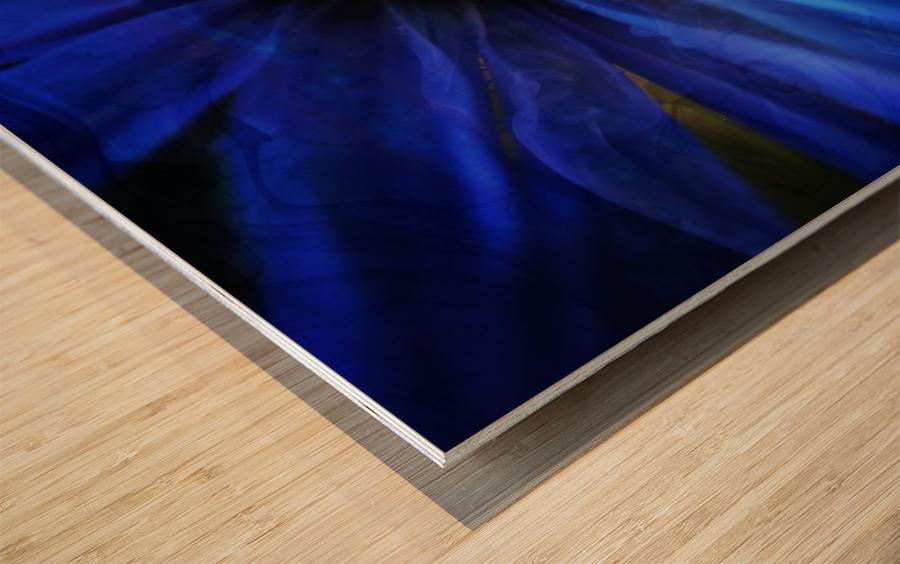 FPS-0064 Wood print