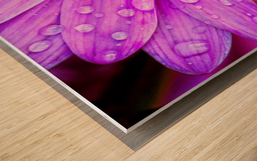 FPS-0068 Wood print