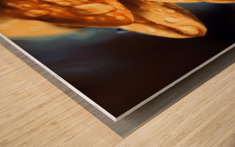 FPS-0069 Wood print