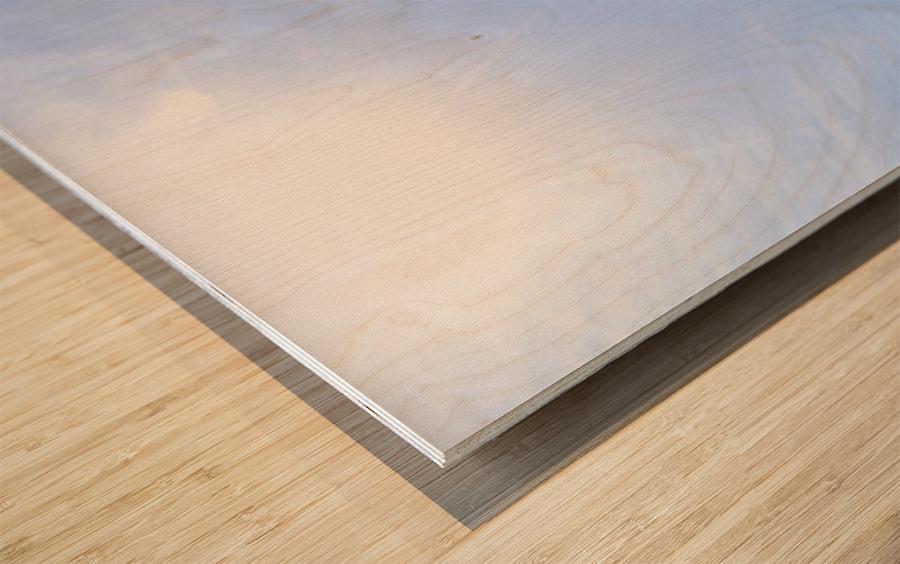 Point Bonita Wood print