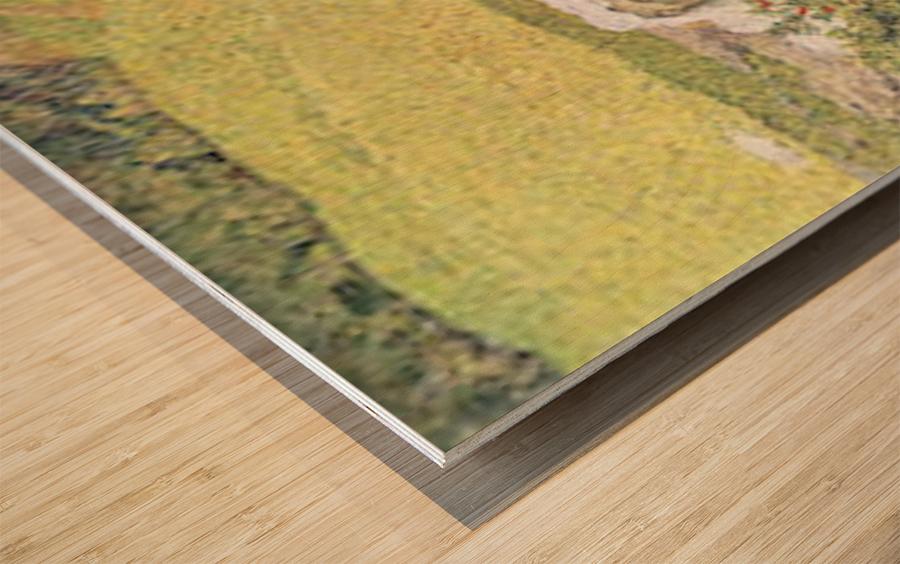 A vanity by Segantini Wood print