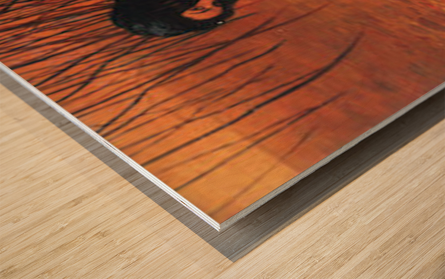 Bathing by Felix Vallotton Wood print