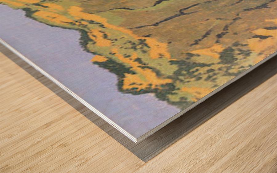 Cliffs by Felix Vallotton Wood print
