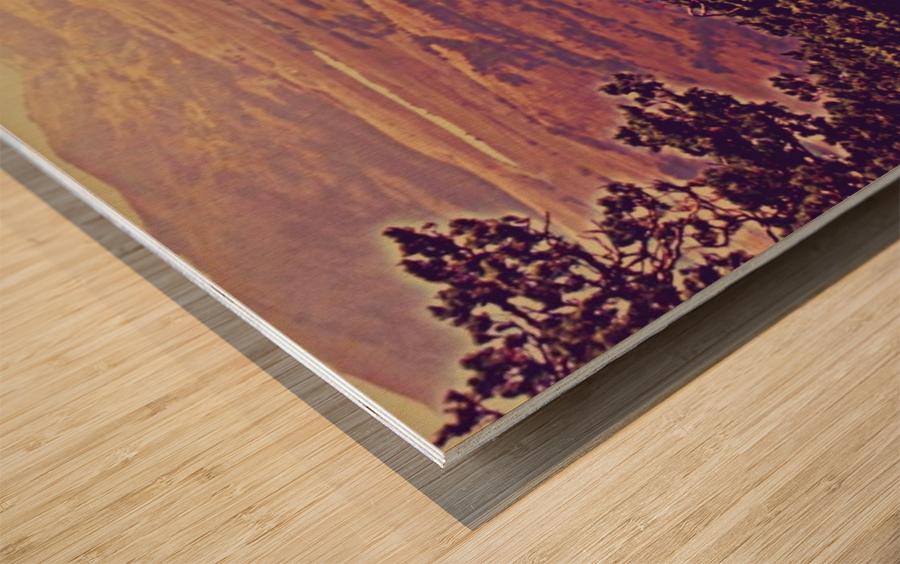 prayingrock Wood print