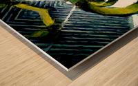 firserpent Wood print