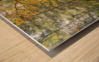 Panorama of a forest in autumn colours; Surrey, England Wood print