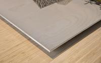 THE TITANIC MUSEUM, BELFAST Wood print