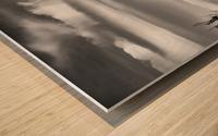 LionsHeadBW Wood print