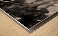 29940005 Wood print