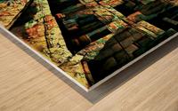 Voyeurs of Sta Cruz Lodge Wood print