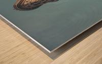 New York Flatiron Building 2 Wood print