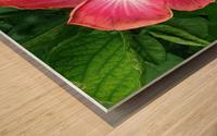 Awesome Petals Wood print