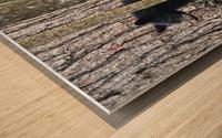 233-Perfect Profiles Wood print