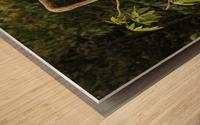 IMG_8130 Wood print