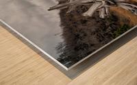 Deadwood at la Bloc Wood print