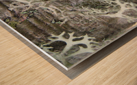 Bark With Lichen 02 Wood print