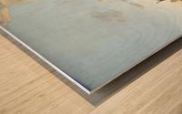 Aelbert Cuyp Wood print