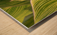Together  -  Ensemble Wood print