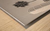 DTLA Palm Tree Wood print