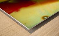 GREEN MONSTER Wood print