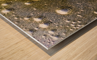 Gold Rush - Ruee vers l Or Wood print